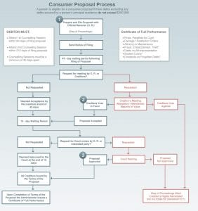 Consumer Proposal Process Map